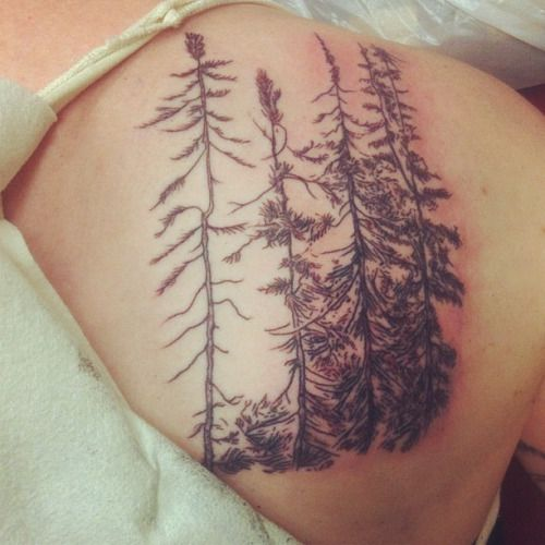 25 Best Ideas About Big Bear Tattoo On Pinterest Ideas And Designs