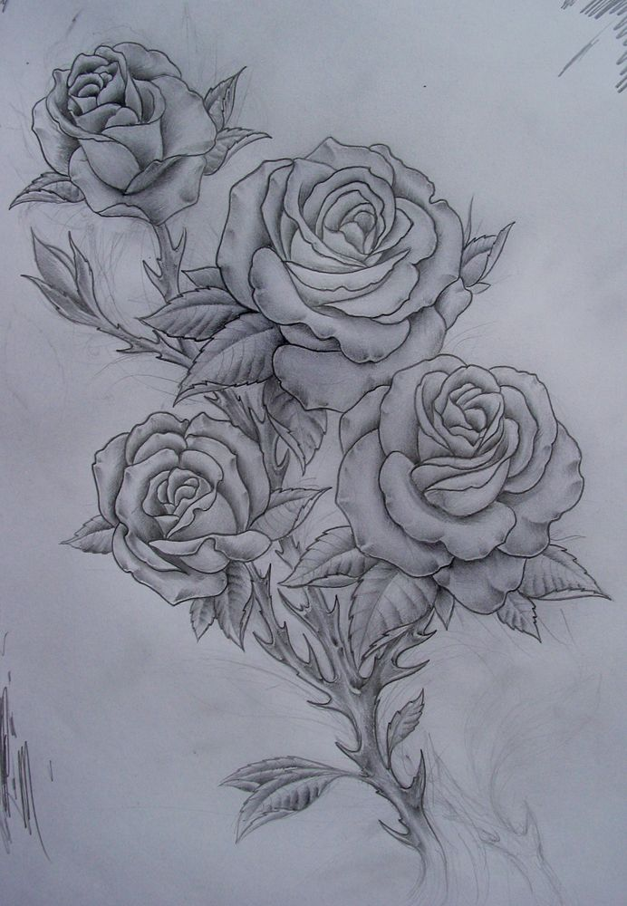 Roses Tattoo Things To Draw Pinterest Rose Tattoos Ideas And Designs