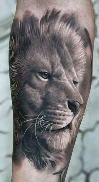 3D Lion Tattoo Lion Tattoo Pinterest Artworks Design Color And Eye Close Up Ideas And Designs