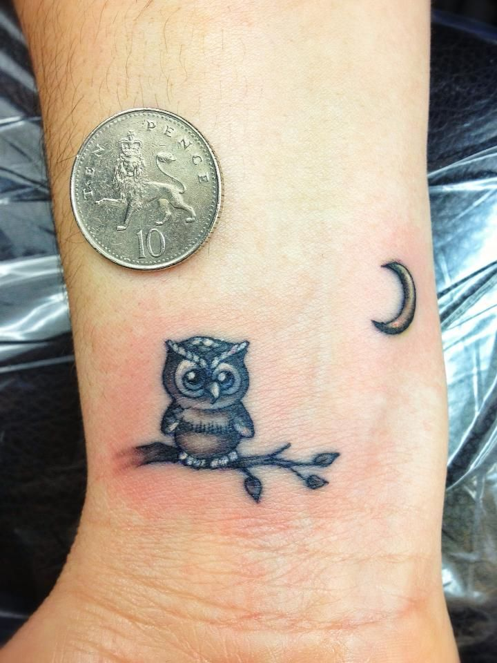 Tiny Owl Tattoos Pinterest Tattoo Ideas Galleries Ideas And Designs