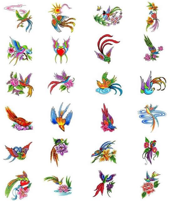 17 Best Images About Bird Of Paradise Tattoos On Pinterest Ideas And Designs
