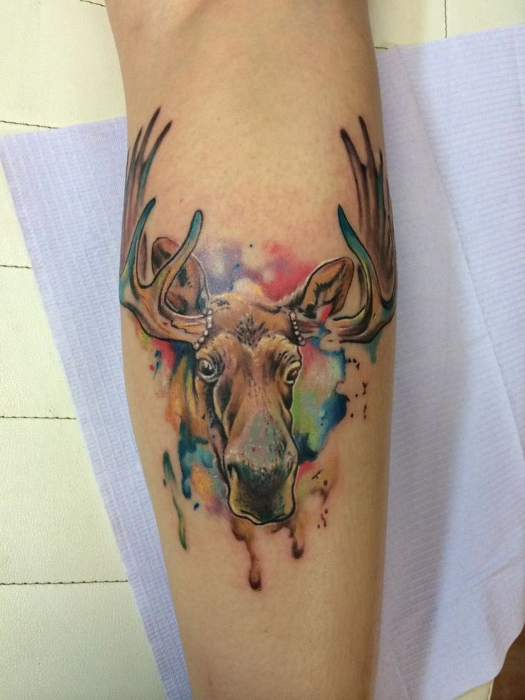 25 Best Ideas About Alaska Tattoo On Pinterest Maine Ideas And Designs