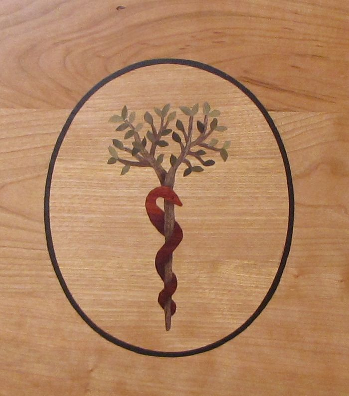 Staff Of Asclepius Tree Of Life Ideas T Pinterest Ideas And Designs