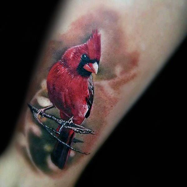 Image Result For Cardinal Tattoo Meaning Tattoos Ideas And Designs