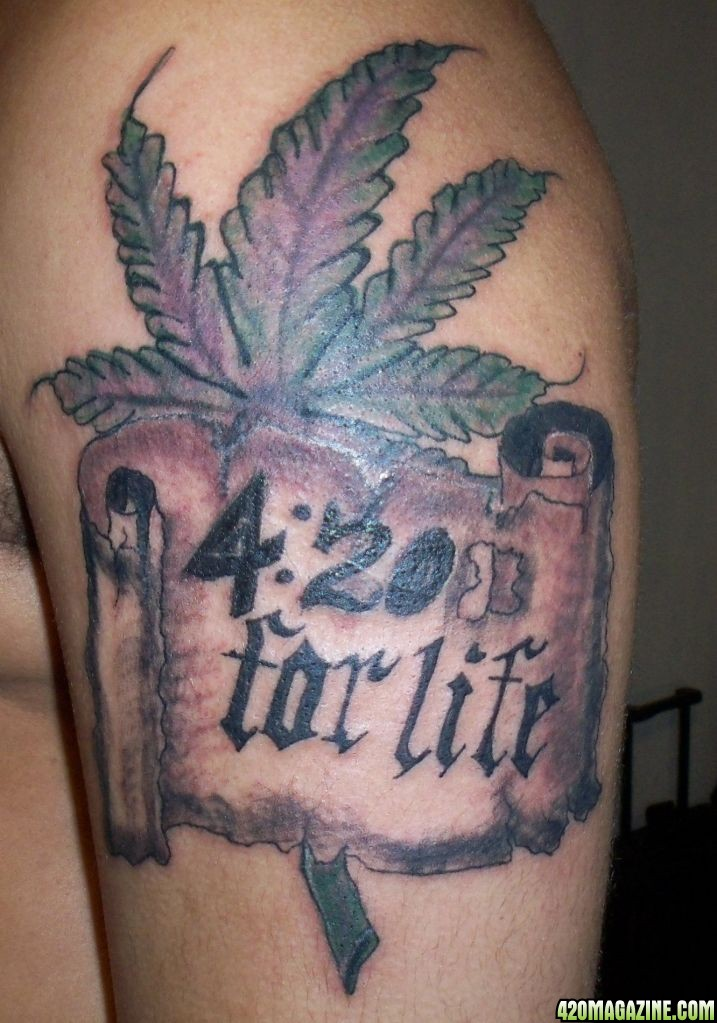 420Forlife 420 Magazine Photo Gallery Ideas And Designs