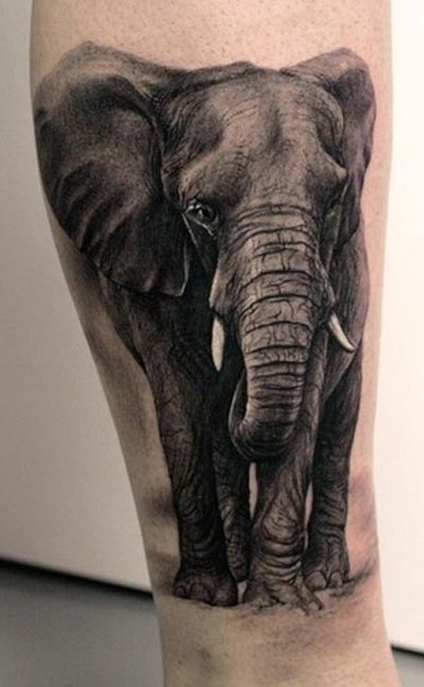 47 Best Elephant Tattoos Ideas And Designs