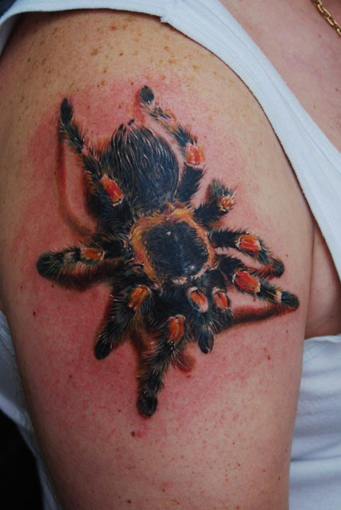 3D Spider Tattoo On Right Shoulder Ideas And Designs