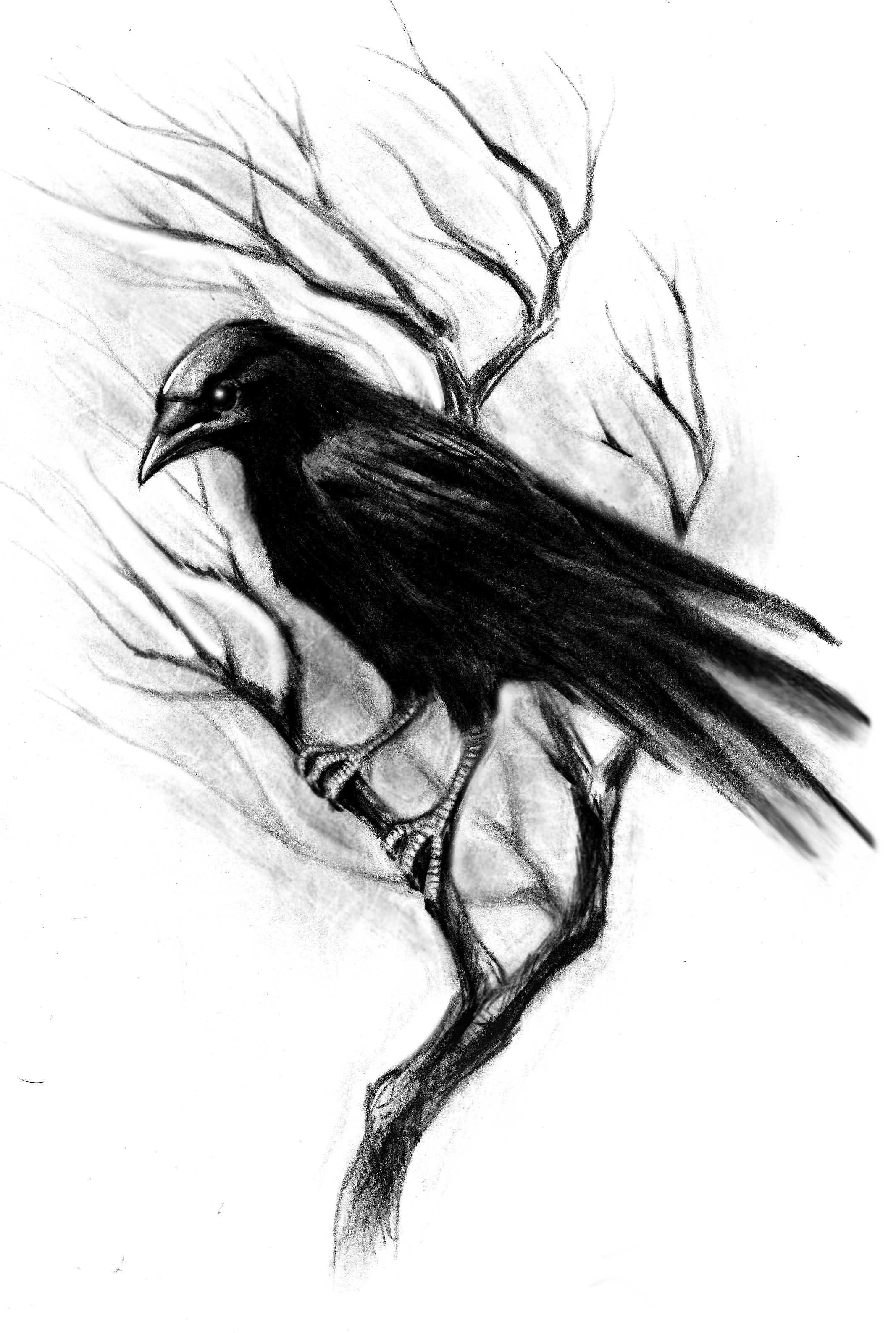 40 Latest Crow Tattoos Designs And Ideas Ideas And Designs