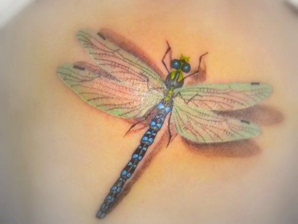 3D Dragonfly Tattoo Design Idea Ideas And Designs