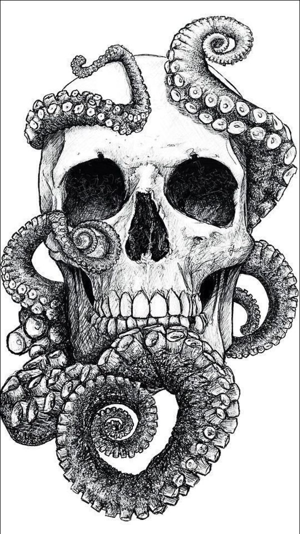 octopus drawings tattoos with skull and tentacles