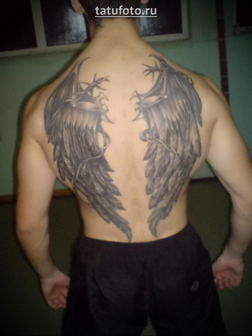 два крыла в тату на спине мужчины Tatufotocom