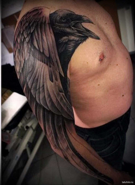 тату черный ворон большого размера мужская татуировка на плече
