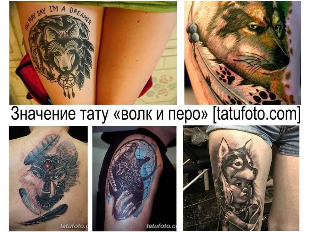 значение тату волк с перьями смысл история фотографии эскизы