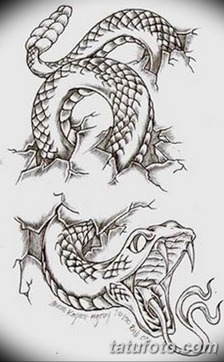 черно белый эскиз тату змея 11032019 002 Tattoo Sketch