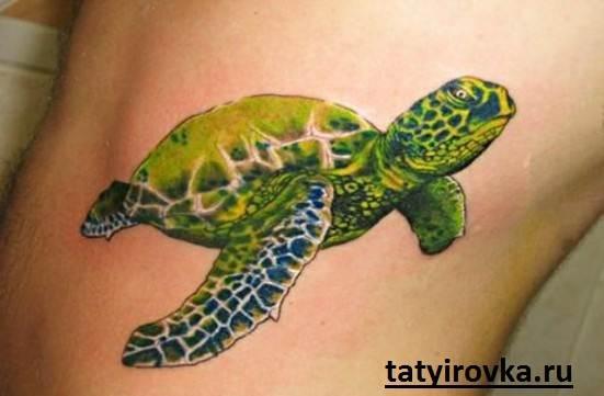 Тату-черепаха-и-их-значение-9