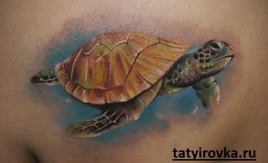 Тату-черепаха-и-их-значение-15