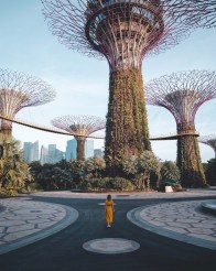 Gardens by the Bay, Singapore Central Singapore - Architecture, Building, Person