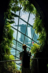Gardens by the Bay, Singapore Central Singapore - Luggage and bags, Person