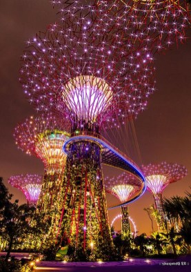 Gardens by the Bay, Singapore Central Singapore - Chandelier, Electrified, Lighting, Night