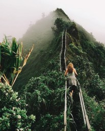 Ubud, Gianyar Bali Indonesia - Atmospheric phenomenon, Forest, Highland, Hill, Hill station, Mountain, Mountainous landforms, Nature, Outdoor structure, People in nature, Person, Vegetation
