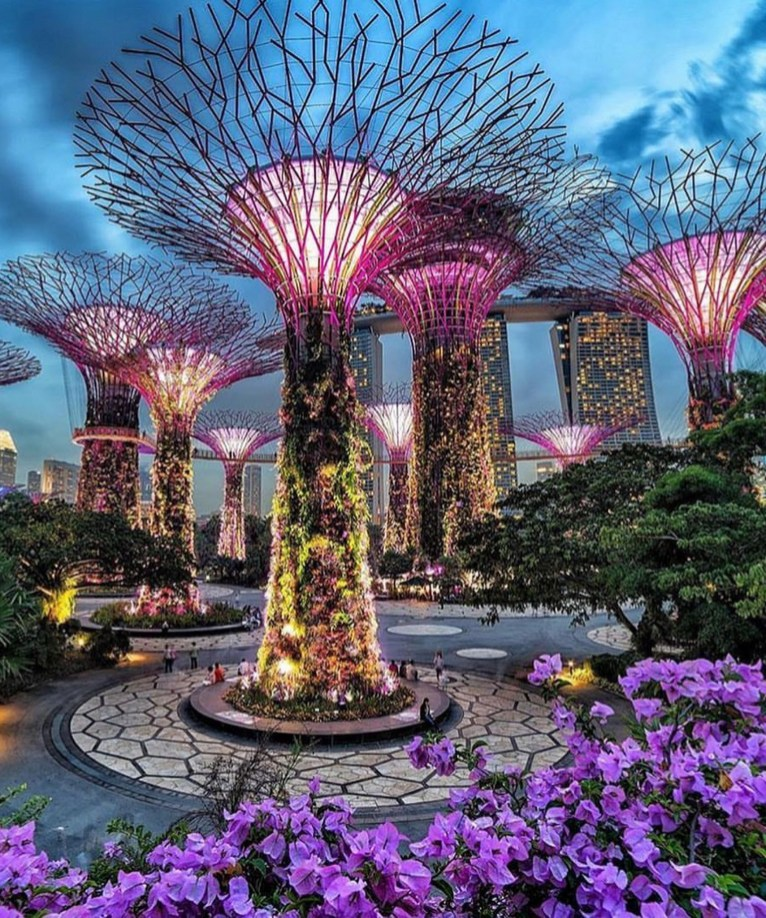 Supertree Grove, Gardens by the Bay Central Singapore - Electrified, Garden, Lighting