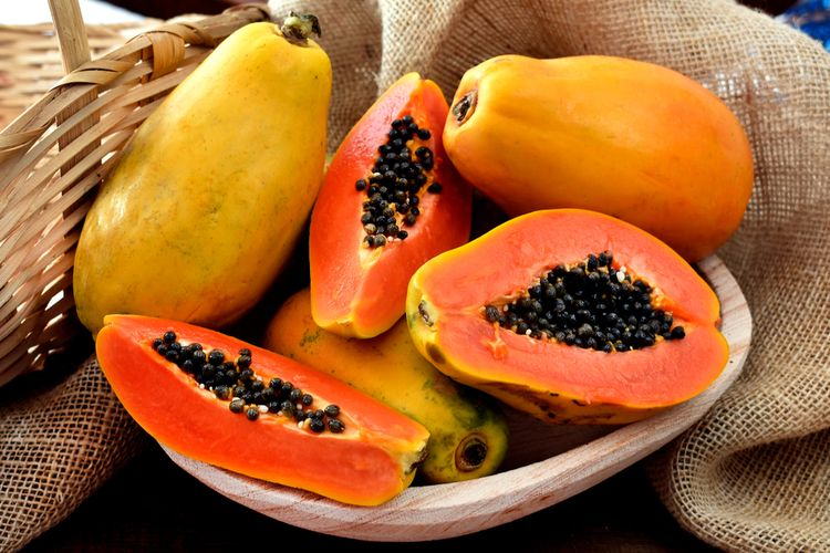 Ilustrasi buah pepaya