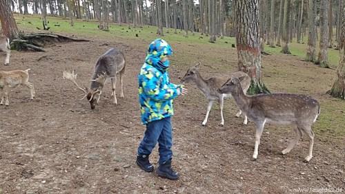 Wildpark Haltern