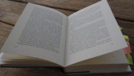 Abbas Khider_Ohrfeige_aufgeklapptes Buch