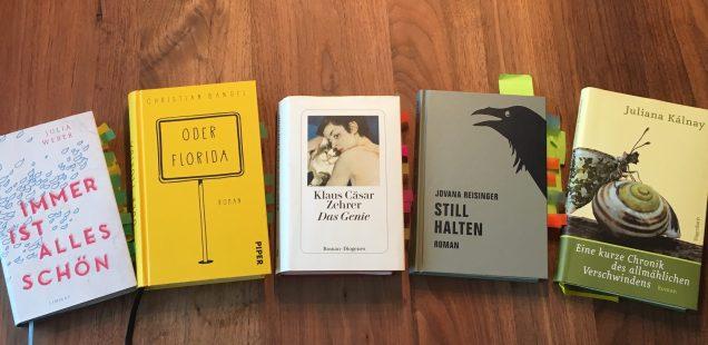 5 Bücher - Wer macht das Rennen bei der Suche nach dem besten Romandebüt 2017?