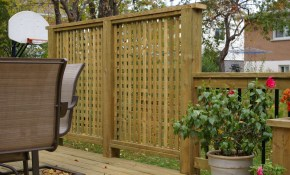 17 Creative Ideas For Privacy Screen In Your Yard for Backyard Screen Ideas