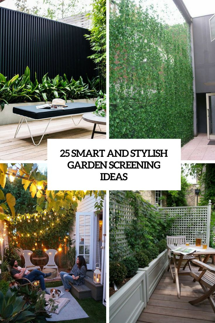 25 Smart And Stylish Garden Screening Ideas Backyard Garden with regard to 11 Clever Initiatives of How to Craft Backyard Screen Ideas