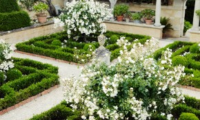 53 Beautiful Landscaping Ideas Best Backyard Landscape Design Tips for 12 Clever Ways How to Make Backyard Planting Ideas