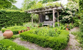 Backyard Landscaping Ideas pertaining to Landscape Design For Backyard
