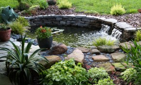 Backyard Pond Ideas Small Ponds Designs Posted August Tierra Este with 11 Some of the Coolest Initiatives of How to Upgrade Backyard Small Pond Ideas