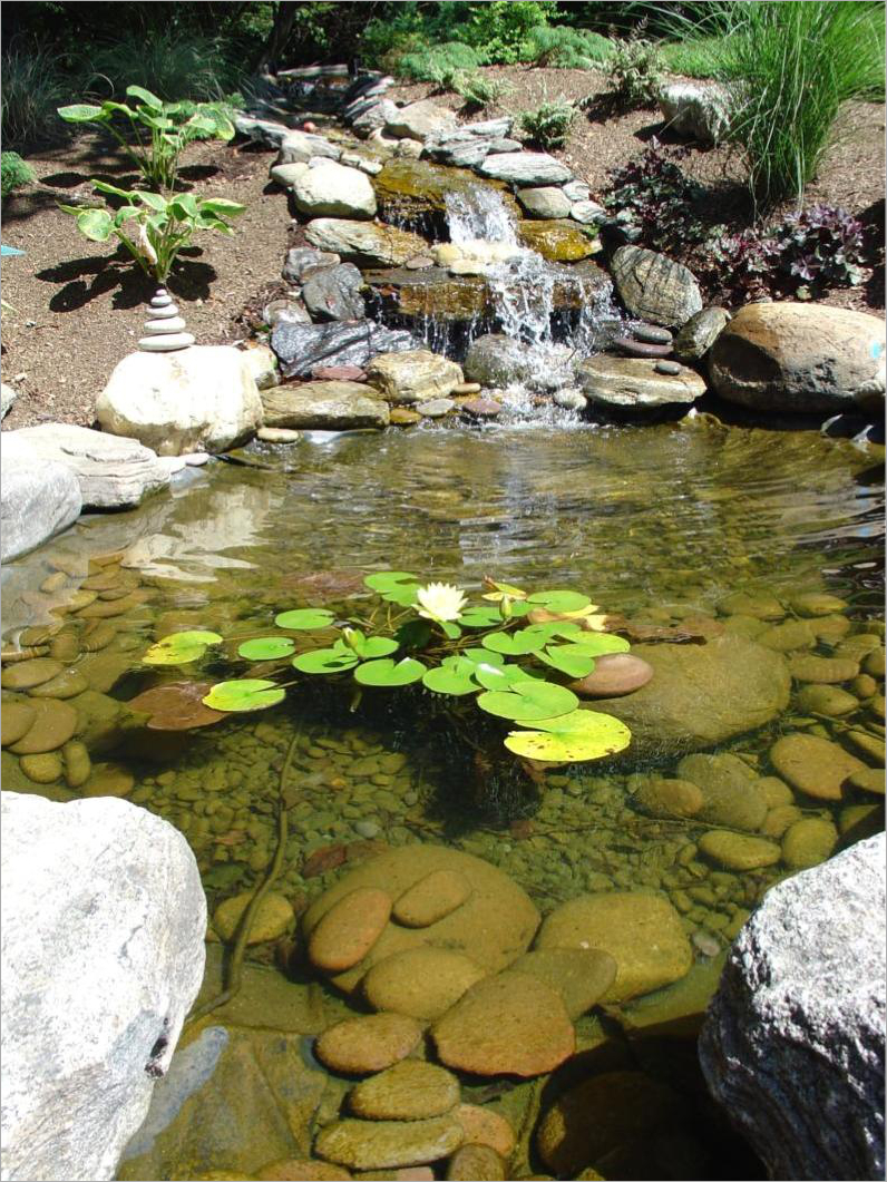Fresh Easy Backyard Pond Ideas 13049 throughout 13 Clever Initiatives of How to Make Easy Backyard Pond Ideas