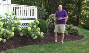 Front Yard Landscape Design Ideas Trumbull Ct Landscape Designer inside 14 Clever Tricks of How to Make How To Landscape My Backyard