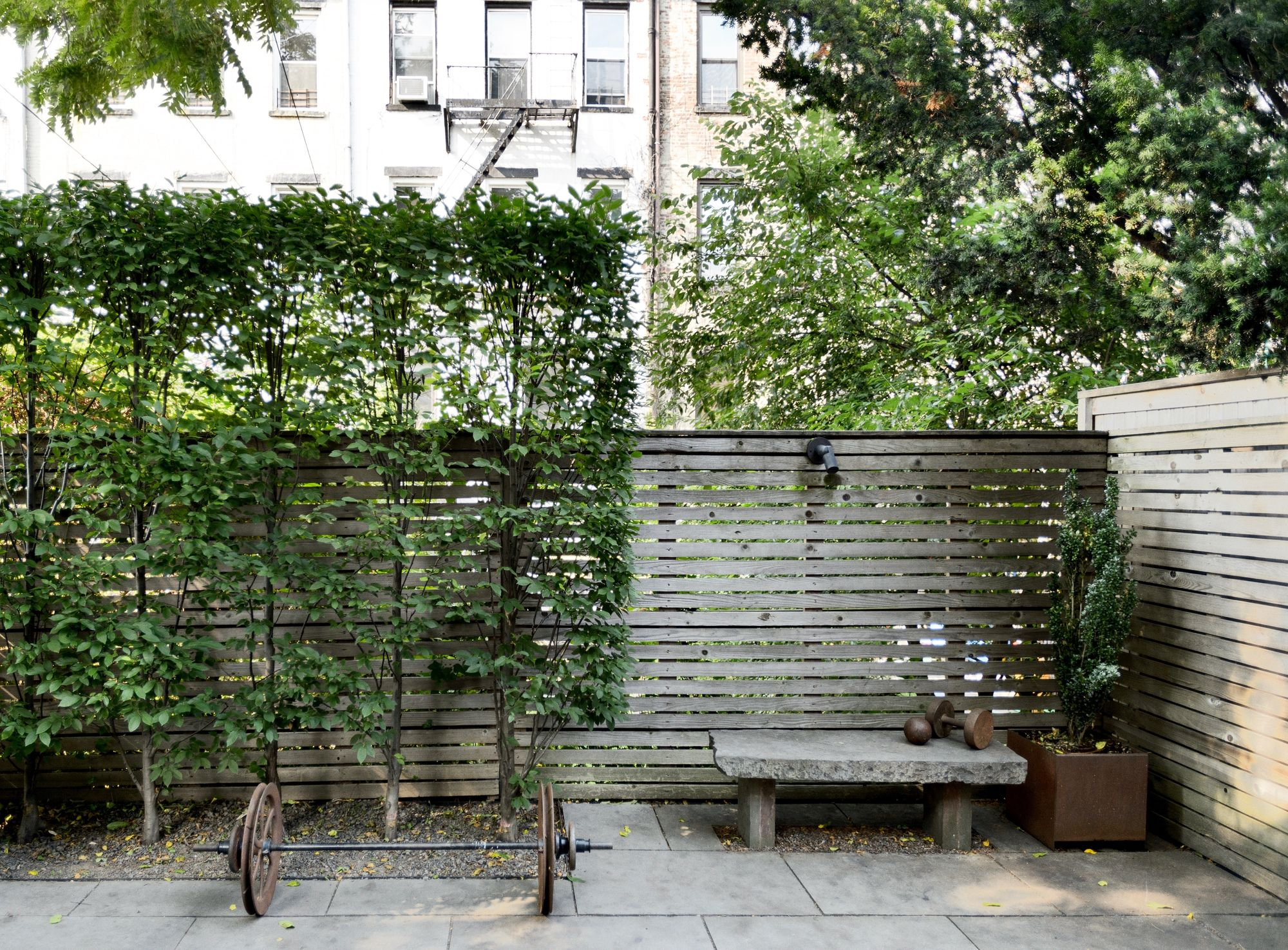 Garden Hacks 10 Ideas For Privacy Screens Gardenista for 11 Clever Initiatives of How to Craft Backyard Screen Ideas