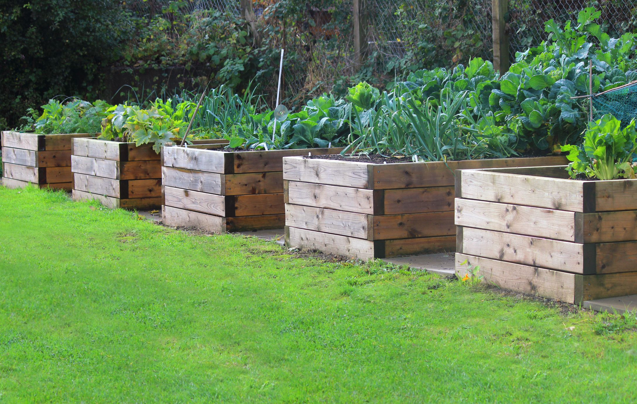 How To Build A Raised Garden Bed Diy Raised Bed Instructions in 13 Clever Initiatives of How to Make Backyard Raised Garden Ideas