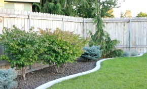 Landscaping Ideas Backyard Cheap The Garden Inspirations Budget with Ideas For Landscaping Backyard On A Budget