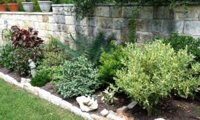 Low Maintenance Landscaping Ideas Texas Central Texas Gardening intended for Backyard Ideas Texas