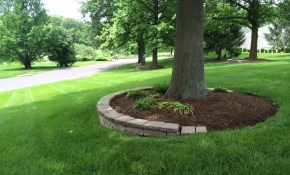 Mulching Around Tree Ringsfor Our Front Yard Tree My Outdoor with regard to Backyard Tree Landscaping Ideas