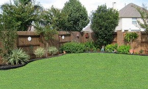 Pin L M On Gardening Lawncare Backyard Landscaping Privacy with regard to Backyard Planting Ideas