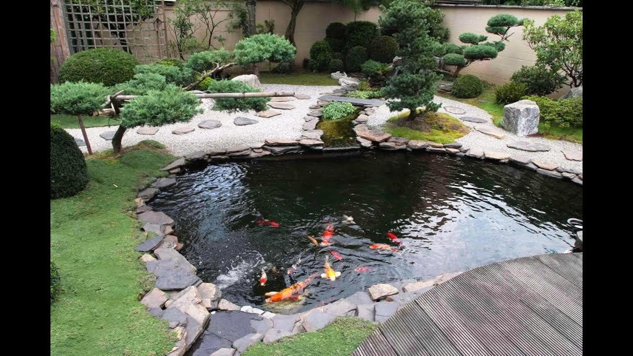 Small Koi Fish In Garden For Ponds Design Ideas Youtube intended for Backyard Fish Pond Ideas
