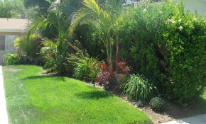 Tropical Landscaping Ideas For Front Yard Small Backyard Landscape inside Tropical Landscaping Ideas For Backyard