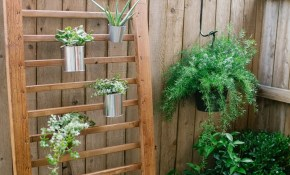 12 Diy Backyard Ideas For Patios Porches And Decks The Budget with Diy Backyard Landscaping On A Budget