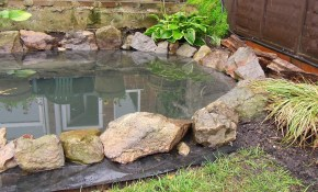 15 Budget Friendly Diy Garden Ponds You Can Make This Weekend Diy throughout Diy Backyard Pond Ideas