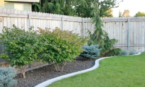 Back Yard Landscaping Ideas On A Budget Backyard Design Ideas in Cheap Backyard Landscaping Ideas Pictures