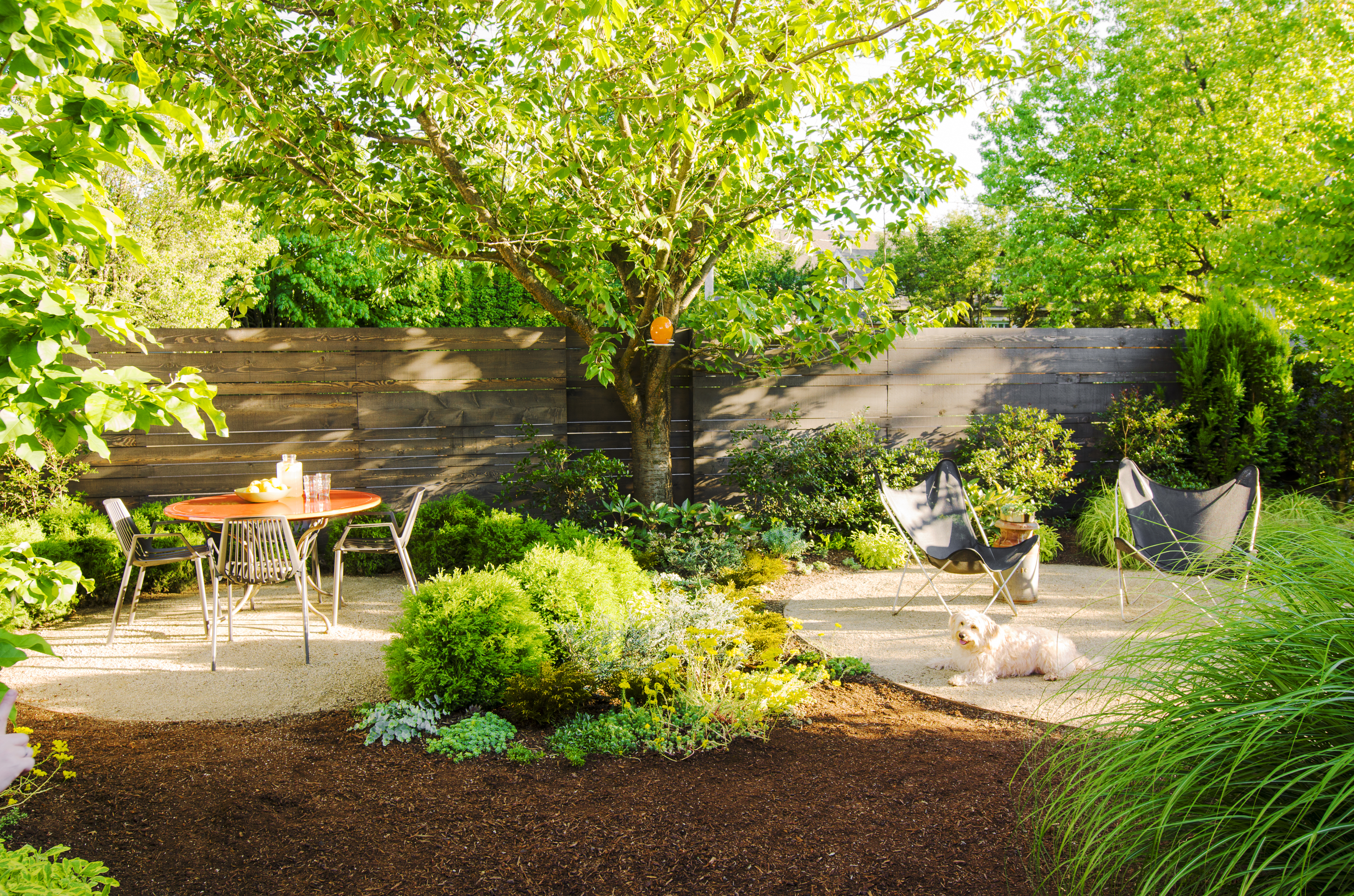 Backyard Ideas For Dogs Sunset Magazine inside 12 Genius Concepts of How to Improve Pics Of Landscaped Backyards