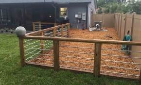 Backyard Ideas With Dog Run Regarding Motivate pertaining to 15 Smart Ideas How to Craft Backyard Ideas For Dogs