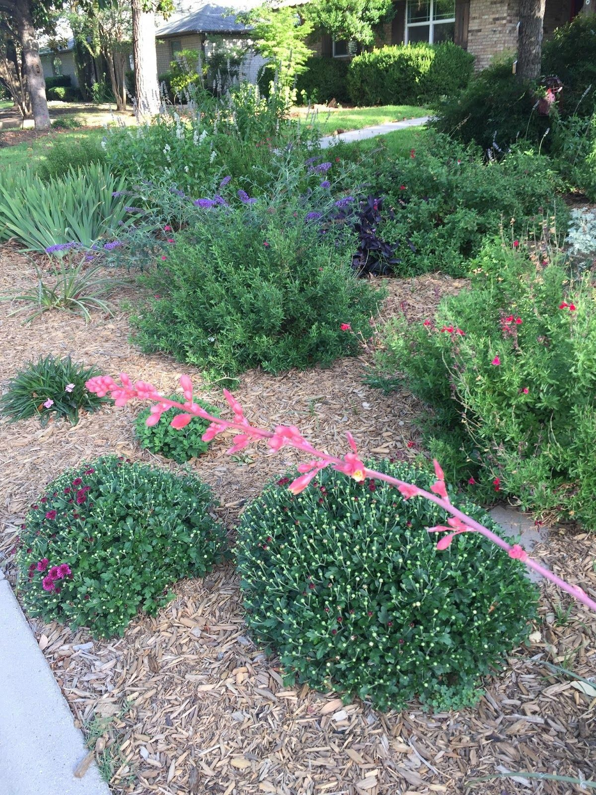 Bgardening Landscape Design Landscape Gardening How Much Does It within 13 Clever Ideas How to Build How Much Does Backyard Landscaping Cost